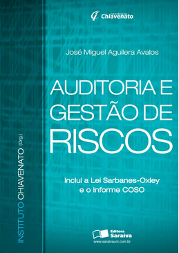 Auditoria-e-Gestao-Riscos